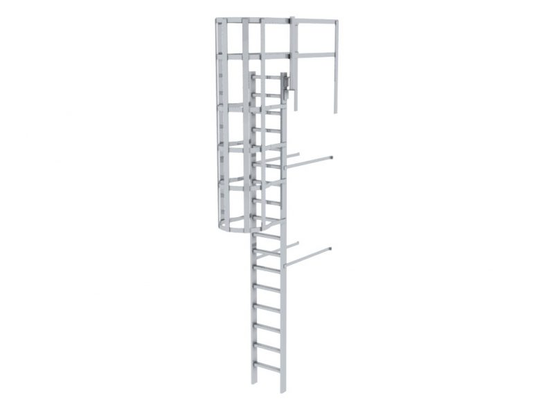 Caged Ladder3a